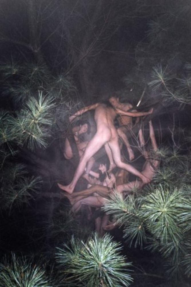 tree#3