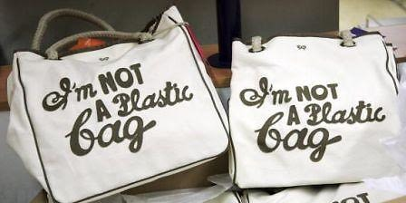 im not a plastic bag
