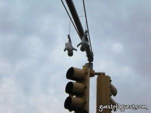 hanging babies
