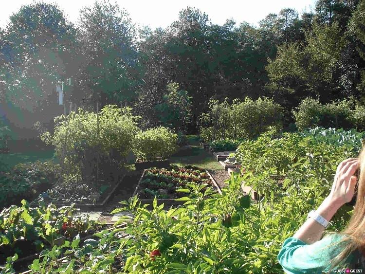Fall 2012 White House Garden Tour