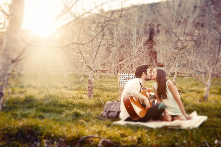 picnic packages romantic
