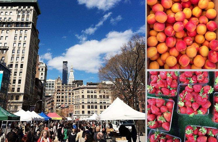 NYC Farmers Markets