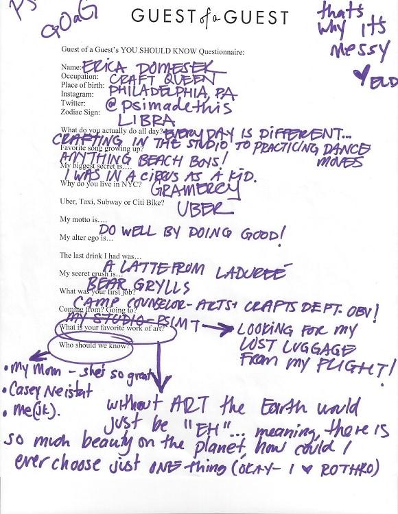 Erica Domesek Questionnaire