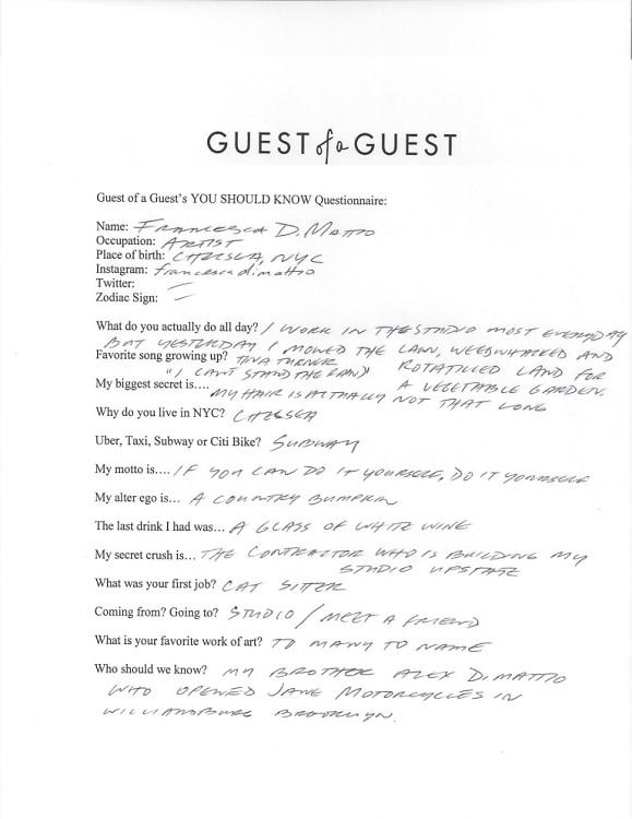 Francesca DiMattio Questionnaire