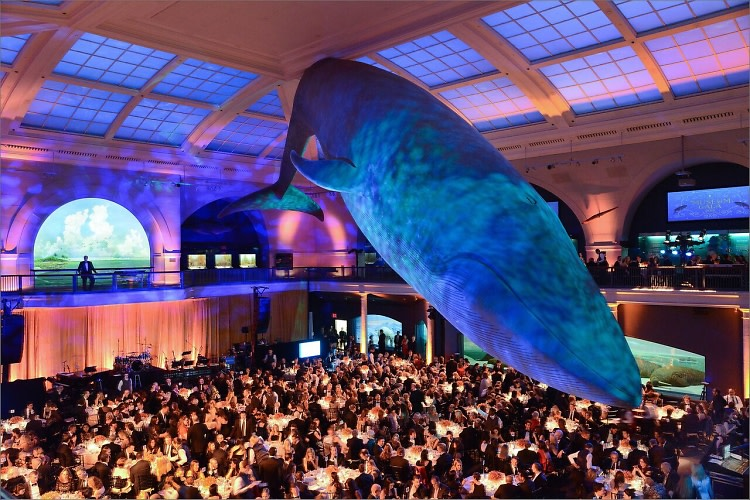 American Museum Of Natural History's 2015 Museum Gala