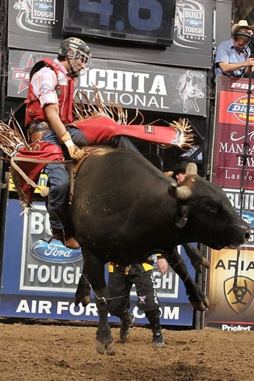 Madison Square Garden Goes Rodeo Hosts Professional Bull Riding Invitational