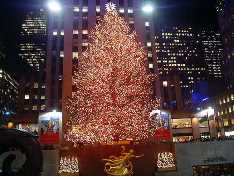 San Francisco Christmas Tree Lighting