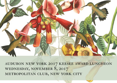 You're Invited: Audubon New York 2017 Keesee Award Luncheon