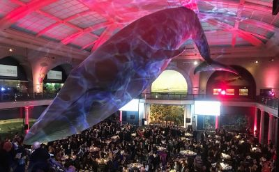 An After-Hours Scavenger Hunt & Dance Party At The Museum Of Natural History?!