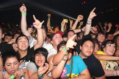 Blink 182 Reunion