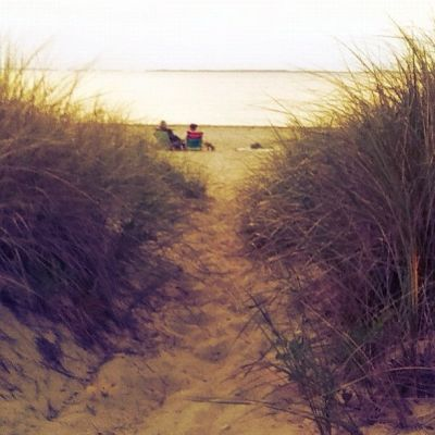 Photo Of The Day: East Hampton Beach