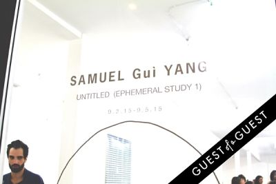Samuel Gui Yang's Untitled (Ephemeral Study 1) at Lurie Gallery