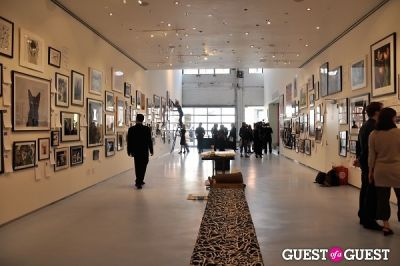 Humane Society of New York's Third Benefit Photography Auction