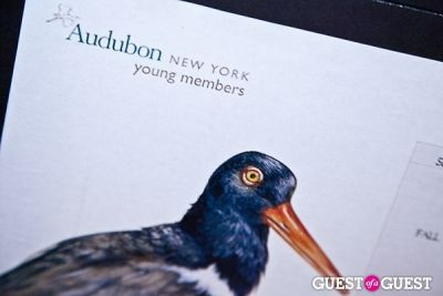 Audubon Young Members Save the Sound Benefit