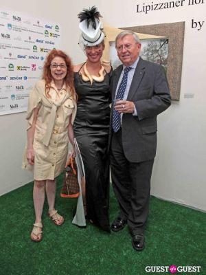 anita tovich in Slovenia in US Lipizzaner horses by Alenka Slavinec