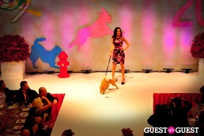ava deylami in Fashion For Paws 2012