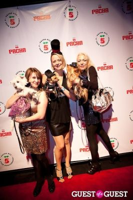 erika searl in Beth Ostrosky Stern and Pacha NYC's 5th Anniversary Celebration To Support North Shore Animal League America