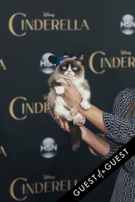 grumpy cat in Premiere of Disney's