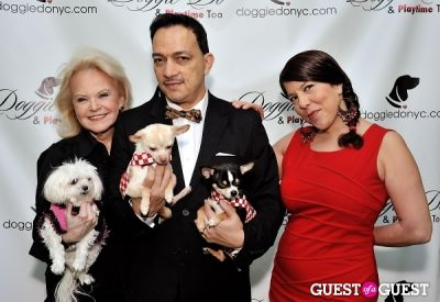 dana humphrey in Doggie-Do and Playtime Too Canine Couture Fashion Show