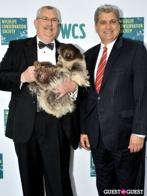 domenic recchia in Wildlife Conservation Society Gala 2013