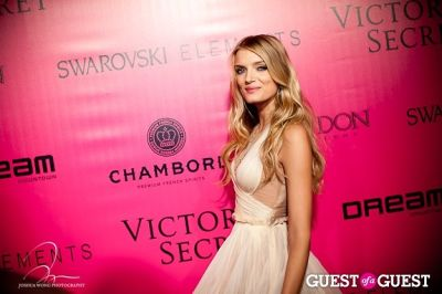 lily donaldson in Victoria's Secret 2011 Fashion Show After Party