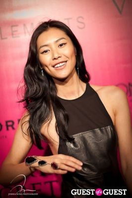 liu wen in Victoria's Secret 2011 Fashion Show After Party