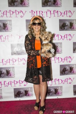 darsey mitchell in Pebble Iscious and Z Zee's Disco Birthday Bash