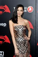 Batman v Superman NY premiere #12