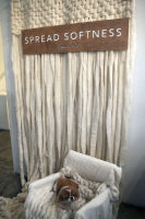 Splendid launches Spread Softness Campaign #101