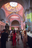 The Met Young Members Party #206