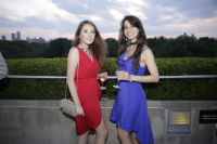The Met Young Members Party #139