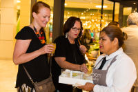 Ballard Designs Tysons Corne Center VIP Grand Opening  #69