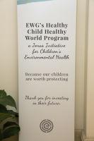 Healthy Child Healthy World's LA Gala 2016 #2