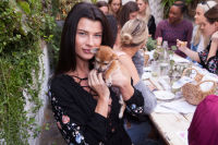 Mowgli Rescue & Rahicali's Furry Friendsgiving at The Butcher's Daughter #22