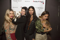 Punches for Puppies: Mowgli Rescue's Fundraiser Event #33