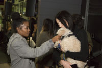 Punches for Puppies: Mowgli Rescue's Fundraiser Event #35