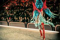 Victoria's Secret Fashion Show Paris 2016: Full Runway and Performances #34