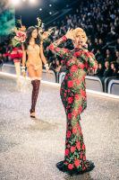 Victoria's Secret Fashion Show Paris 2016: Full Runway and Performances #91