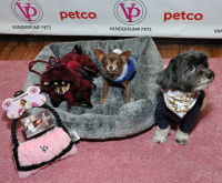 Vanderpump Pets launch event #12