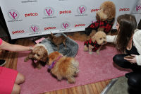 Vanderpump Pets launch event #24