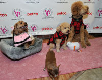 Vanderpump Pets launch event #27