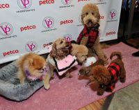 Vanderpump Pets launch event #28