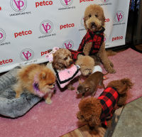 Vanderpump Pets launch event #29