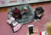 Vanderpump Pets launch event #57