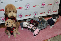 Vanderpump Pets launch event #58