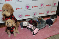 Vanderpump Pets launch event #59