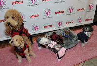 Vanderpump Pets launch event #60