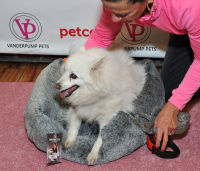 Vanderpump Pets launch event #67
