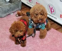 Vanderpump Pets launch event #76