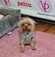 Vanderpump Pets launch event #97